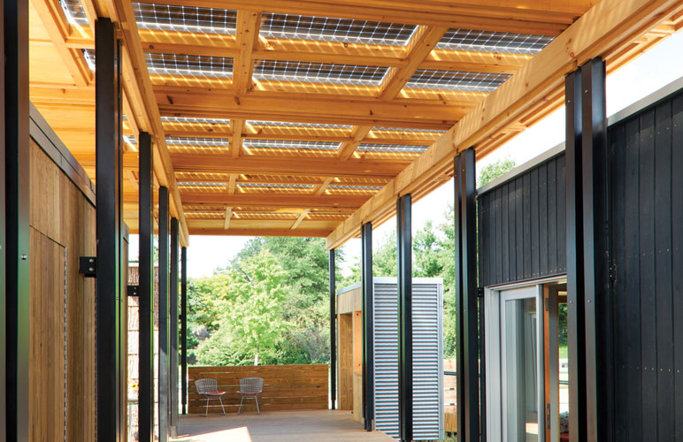 Solar wood